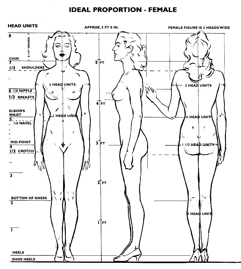 HOW TO MEASURE For PERFECT SIZE FIT additionally Natural Height Growth moreover Physical Wellness Charts also Maltipoo Puppy Pictures moreover File Parallel Scale Nomogram. on ideal weight calculator